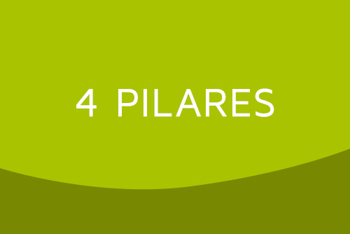 OLIMPO - Imagem Post Blog - 4 Pilares